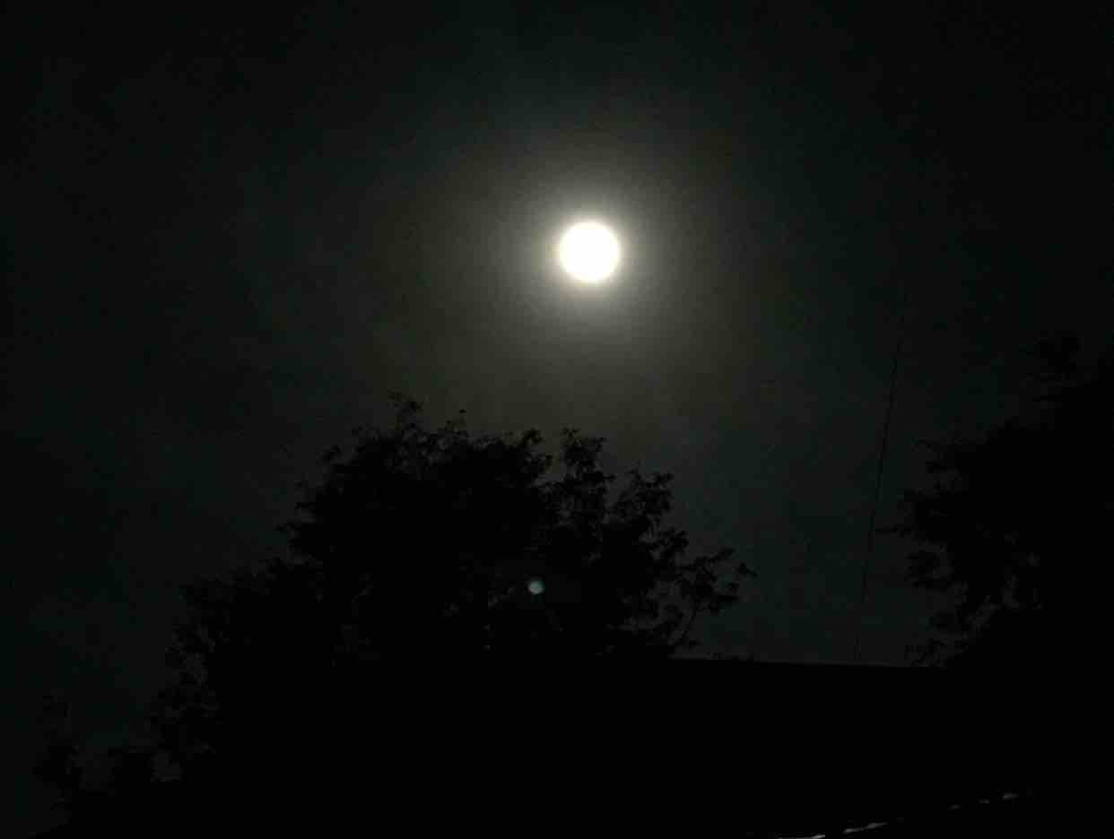 ] Nửa Đêm Nguyện Cầu