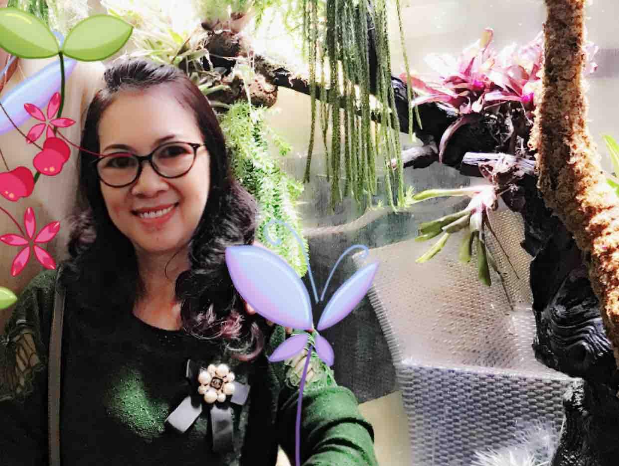Hoa sứ nhà nàng 2 - PHƯỢNG XANH