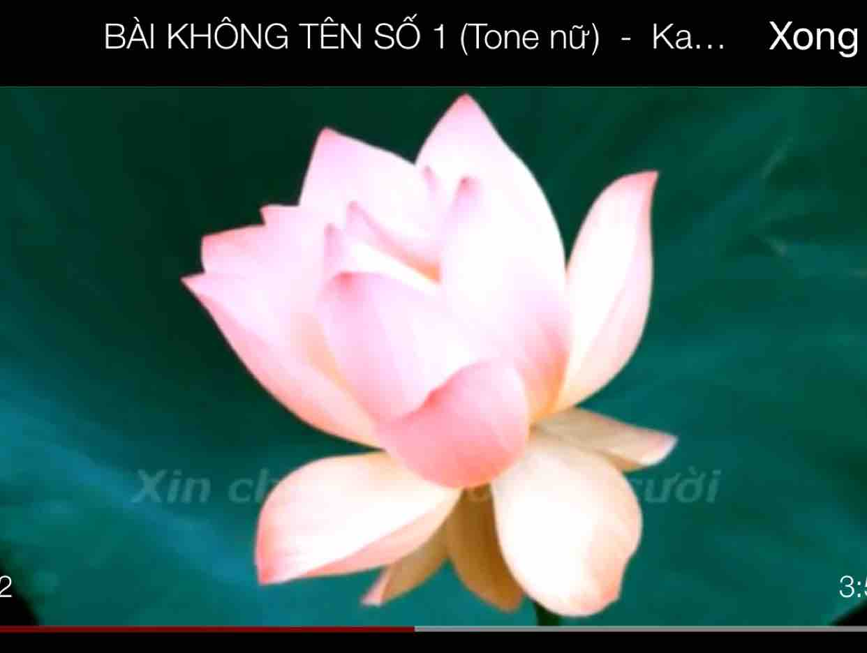 không tên số 4 -Dung Tien & Hồng Mai
