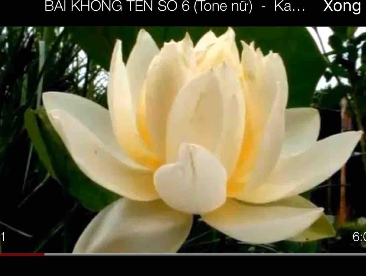 BÀI KHÔNG TÊN SỐ 6 -Le Hongmai