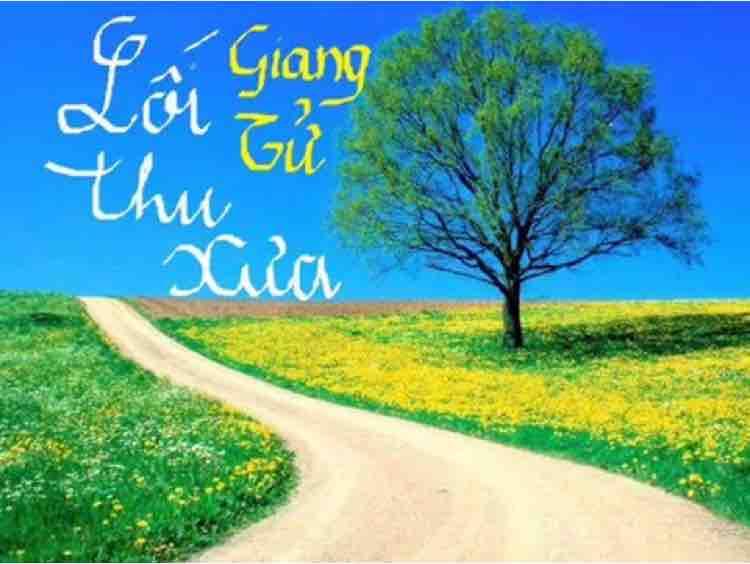 ⚜️LỐI THU XƯA~A Thuận & Nhung⚜️
