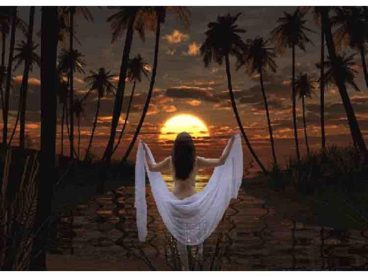 HAPPY KARAOKE | NGƯỜI TÌNH KHÔNG ĐẾN - TONE NAM | C#m