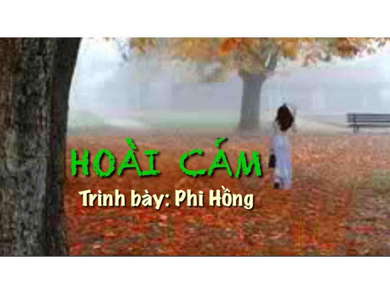 Hoài Cảm - Phi Hồng