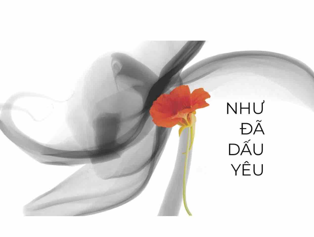 Như đã dấu yêu/ Poppy ft Lee