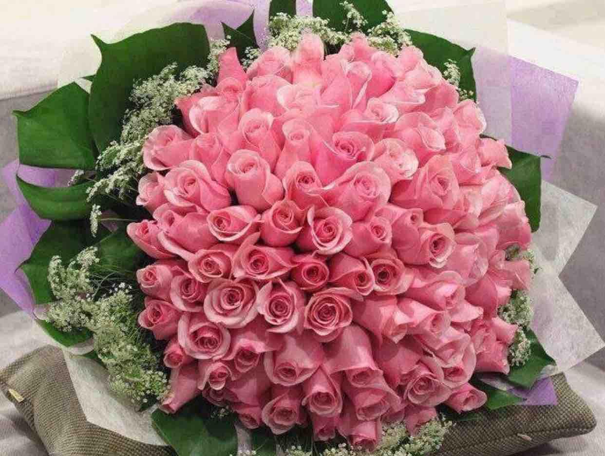 Triệu đóa hoa hồng ❤️ Ha Phương ❤️