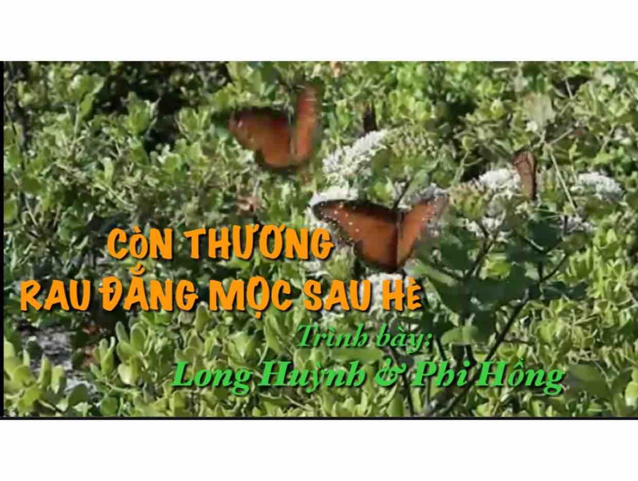Con Thuong Rau Dang Moc Sau He