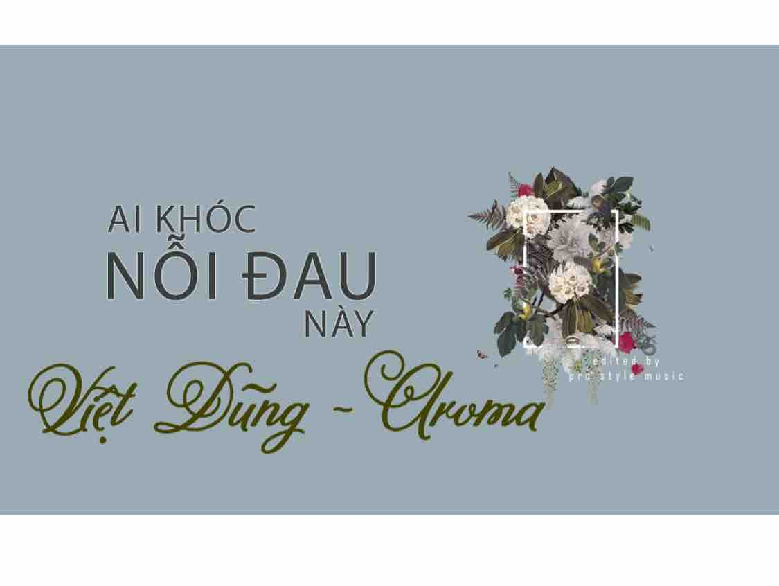 Ai Khóc Nỗi Đau Này (Việt Dũng - Aroma)