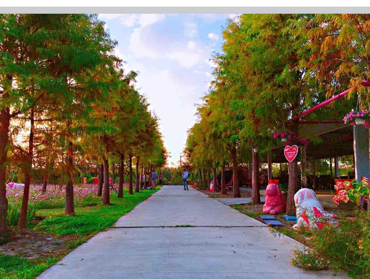 Trở lại phố cũ - Kelvin Hiếu ft Son ca