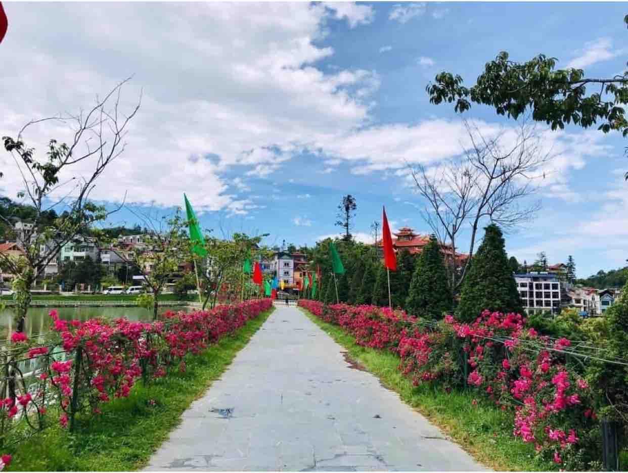 Vườn Tao Ngộ - Sc VT & ĐA