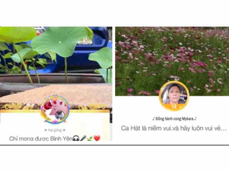Cánh Diều Mưa ☘️ TrầnVan VanTran & Lá☘️ 2020.09.10